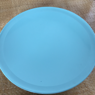 プラスチィク皿