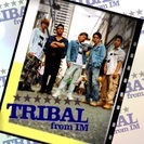 TRIBAL from IM
