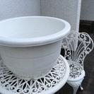 【値下げ 】家庭菜園もできる大きな鉢