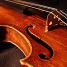 バイオリン 20代からシニアの方のためのヴァイオリン教室