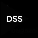 2018年度大学受験に向けて高2生募集!【DSS】革新的指導でM...