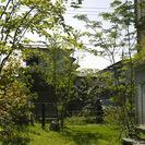 雑木や自然素材を用いて、自然回帰のできる庭園を造ります。