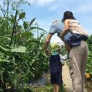 【葛飾うえくさ体験ファーム】安心の有機・無農薬栽培!手ぶらで通え...