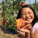 【シェア畑 千葉検見川】安心の有機・無農薬栽培!手ぶらで行ける貸し...