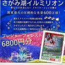 4枚 2017/3/31まで【さがみ湖イルミリオン】プレジャーフ...