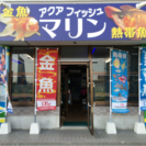 本日で最終初売りセールを13時から開催!!