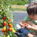 【シェア畑 東久留米】手ぶらで行ける、有機・無農薬栽培の貸し農園!...