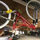 プジョー 前後ディスクブレーキ 自転車