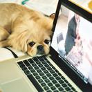 ★新しいSEO基礎 ブログを早く書く方法を教えます!