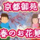 春だ!桜だ!京都御苑でほっこりお花見デート♪