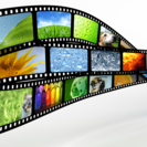 【格安!高品質!映像制作】 縦型動画、WEB用動画、結婚式プロフ...