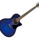 アコースティックギター(S.yairi YE-5M)