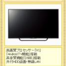 テレビ 49型 ジャンク品