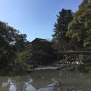 飛鳥時代の奈良に詳しいかたいませんか