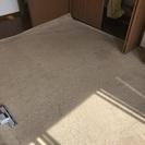 8畳のカーペット 絨毯