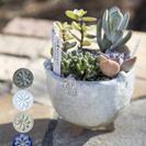 【陶芸】陶器で作る三つ足の植木鉢【インナチュラル】