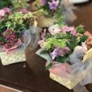 【のにわ】苔玉&ギャザリング教室 − 大阪府
