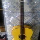 ギター kasuga