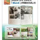 webデザイナー【急募】業務拡大に伴い、各種クリエイター募集中!!