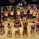 相撲好きな方❗