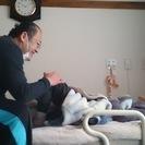 高齢者の方の健康のお手伝いの訪問マッサージはりきゅう
