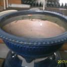 大きな植木鉢、高さ30㎝幅77㎝程度