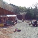 足掛け10年、果樹園制作、徐々に実が着き始めております