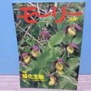 北海道ネーチャーマガジン 「モーリー」 2001年5号