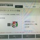 04/15甲子園(阪VS広)