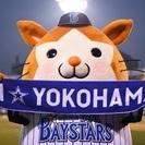 横浜スタジアムでベイスターズ応援しませんか?(基本現地集合)