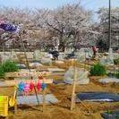 市民農園【シェア畑・さいたま与野】スタッフ、菜園アドバイザーを大募...
