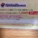 ❗️51%OFF❗️さがみ湖プレジャーフォレストチケット