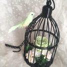 (23)【プリザーブドフラワー】【すぐお渡しできます】鳥かごアレンジ🎵