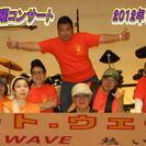 リードーギター、キーボード募集 (ヒート・ウェーブ) − 神奈川県