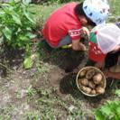 farmers visit 〜農業体験(昼食・お土産付き)〜