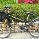 22インチ 子供用マウンテンバイク