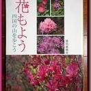 花もよう-四国の山を歩こう◆ ヤマシャクヤク ◆ 山野草 ◆ 群...