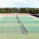 ソフトテニスがしたい方募集!