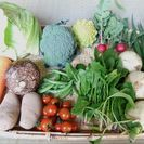 農家直送!淡路島の新玉ねぎ3Kgと旬の野菜セット5品目以上詰合わ...