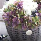 6月◆アレンジメントレッスン◆紫陽花のアレンジメント(3席)