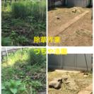 庭の管理致します。剪定 除草 つちや造園