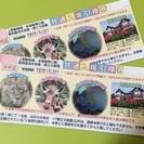 上野動物園 葛西臨海水族園 ペアチケット