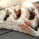 【アクアリウム】水槽 アクセサリー 大理石の飾り石
