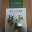 ■希少■薬用植物画譜 画:小磯良平  解説:刈米達夫