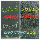 【金魚・メダカ】生き餌★ミジンコ培養・ゾウリムシ種水セット