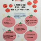 にじいろマルシェ in トマト祭り♪