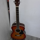 レジェンド アコースティックギター 弦楽器 ギター