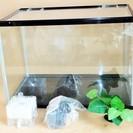 ファイブプラン Five Plan 観賞用水槽 金魚 熱帯魚◆自宅...