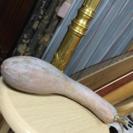 鶴首カボチャの苗 2株 昔から実家の地域に伝わる品種
