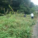 ■福岡市 【本】除草・草刈り・伐採 いたします。【福岡グリーン】